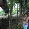 Horseback Riding Lessons in Santa Teresa
