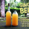 How to Make Ginger Beer – Recipe