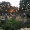 South Texas Wedding