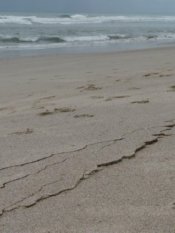 costa rica earthquake - photo #22